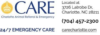 CARE Emergency graphic - branded