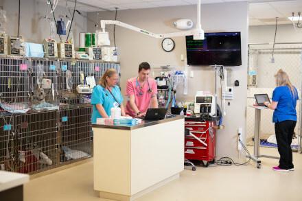 Critical Care techs in ICU
