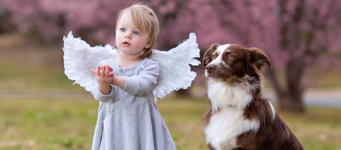 CARE Silent Partner angel